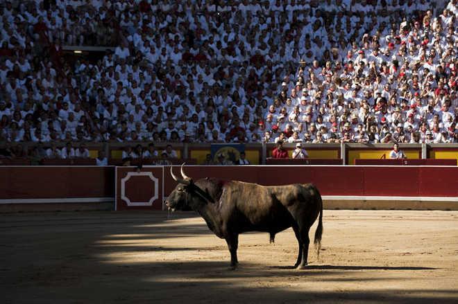 A matança dos touros de San Fermín em 15 imagens