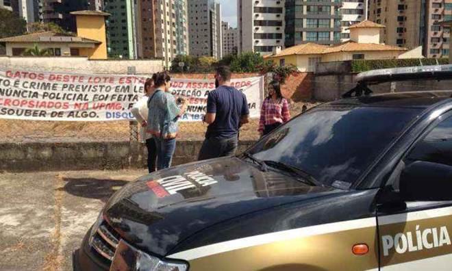 Polícia abre inquérito para investigar mortes de gatos no Bairro Belvedere em Belo Horizonte, MG