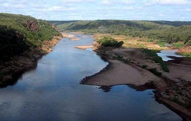 Moçambique vai deslocar cerca de 3000 animais selvagens para explorá-los no turismo