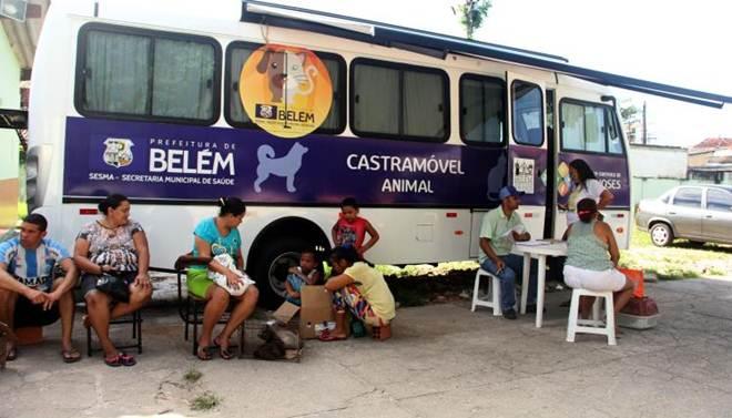 Castração de cães e gatos no bairro do Guamá, em Belém (PA) atenderá mais de 900 animais até o final de agosto