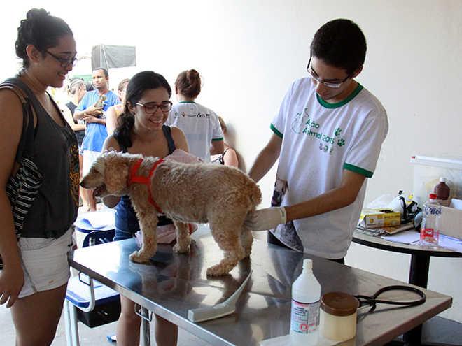 UFRA promove campanha contra o abandono de animais no campus de Belém, PA