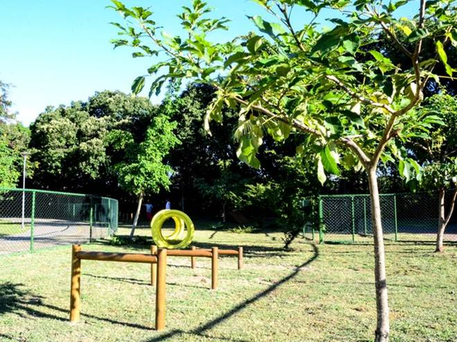 Recife (PE) ganha parque com obstáculos recreativos para cães