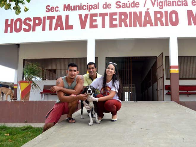 Voluntários mantêm viva luta em defesa dos animais em Serra ...