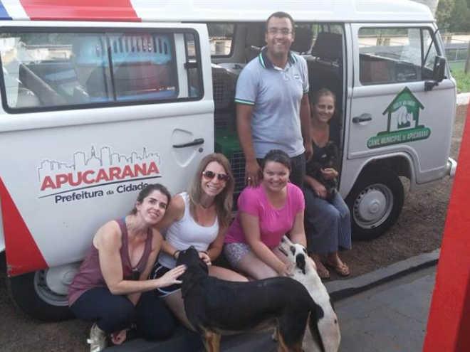 Projeto Amigos do Bicho prevê castrar 200 animais este ano em Apucarana, PR