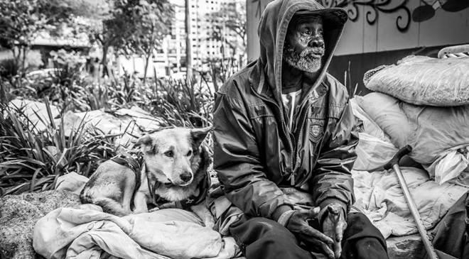 Animais podem ser autorizados em abrigos para moradores de rua em Curitiba, PR