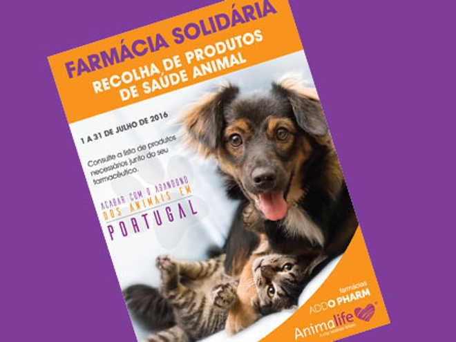 Portugal: Farmácia Solidária para ajudar animais abandonados