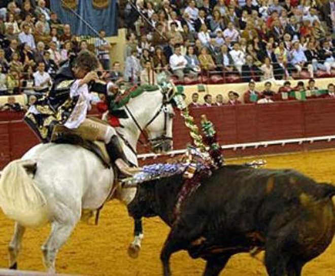 Portugal: Parlamento chumba projetos de lei sobre touradas