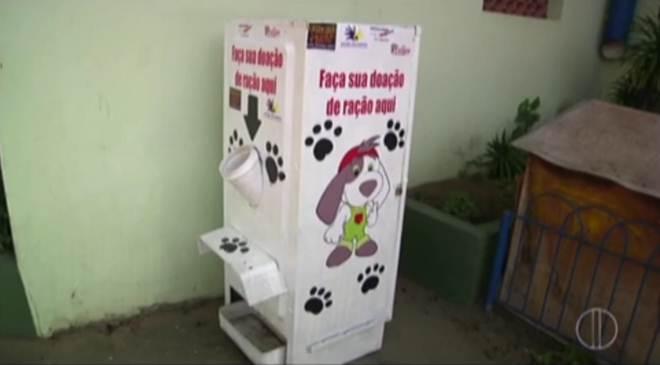 Geladeira vira depósito de ração para animais de rua em São João da Barra, RJ