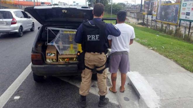 PRF prende traficante foragido por maus-tratos a animais em Nova Iguaçu, RJ