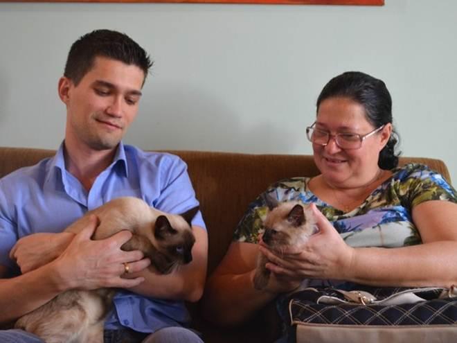 Gatinho de Rondônia atropelado por carro e resgatado de cisterna é adotado