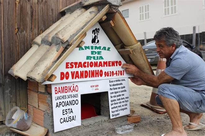 Casinha de cães improvisada chama atenção no centro de Criciúma, SC