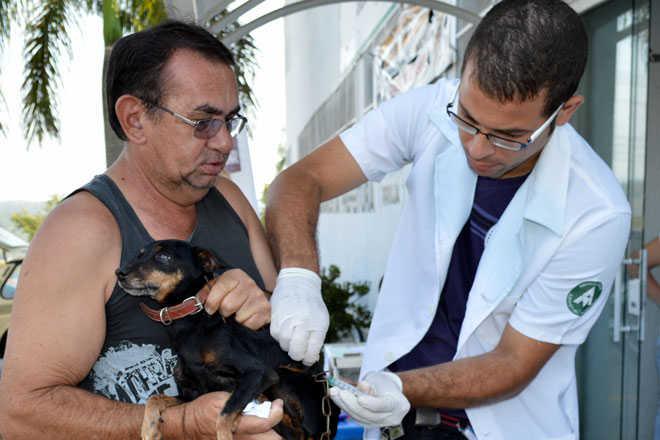 Sete bairros terão vacinação antirrábica em Arujá, SP