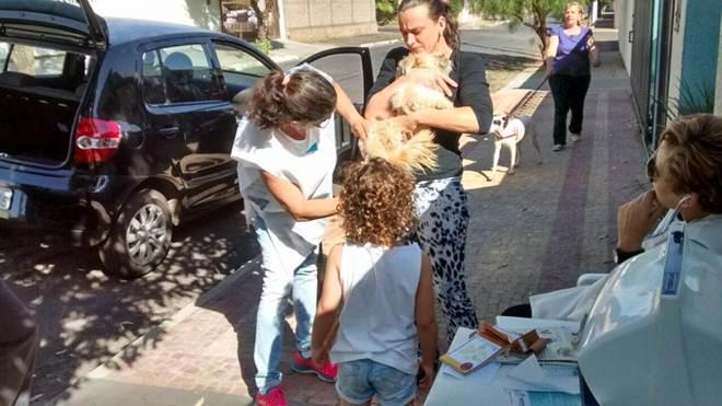 Mais de 4 mil animais são imunizados contra a raiva em Catanduva, SP