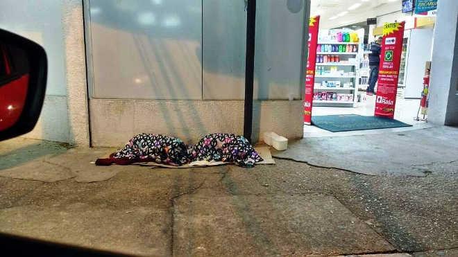 Frio: Funcionários de farmácia cobrem cães em calçada de São Roque, SP