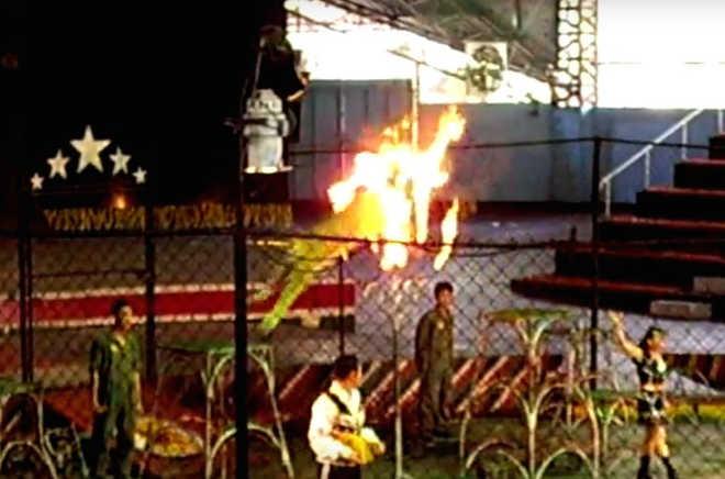 Tigres são forçados a pular através de aros em chamas em 'zoológico' popular na Tailândia