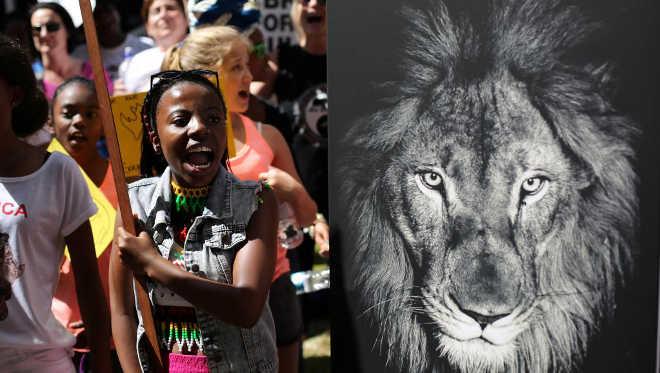 Futuro de animais ameaçados de extinção é discutido na África do Sul