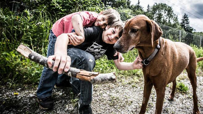 """""""Cuidar dos animais"""" tema de uma nova oficina gratuita para crianças"""