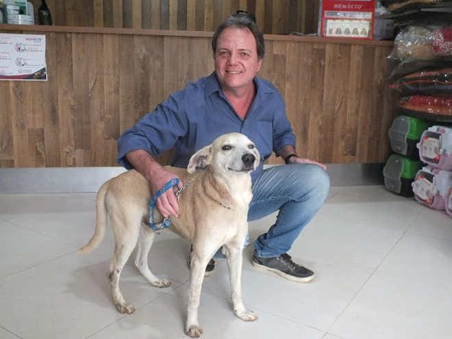 Cachorro espancado por idosa em Cachoeiro de Itapemirim (ES) ficará com biomédico que doou exames