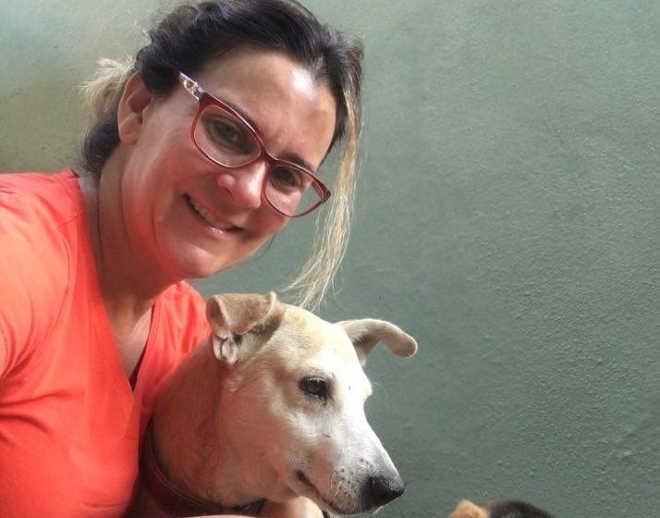 Final feliz: cachorro agredido por idosa em Cachoeiro (ES) já está em nova casa