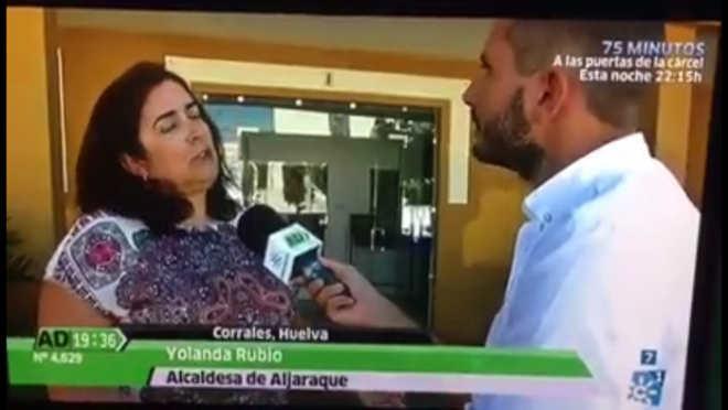 Prefeita de cidade espanhola diz que vai exterminar gatos