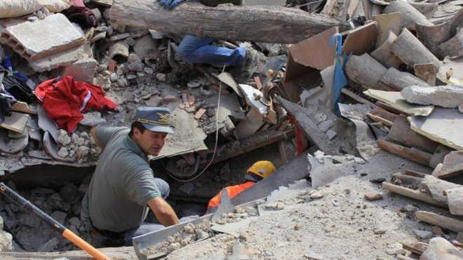 Gato foi salvo dos escombros 15 dias depois do sismo em Itália; vídeo