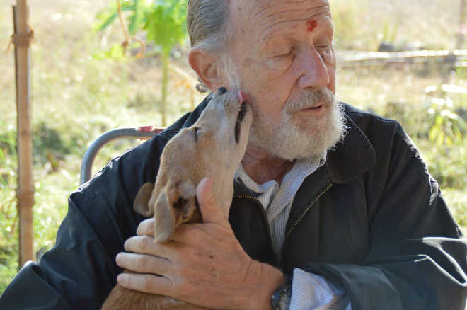 Este americano desistiu de seu plano de uma aposentadoria relaxante para criar um abrigo de animais na Índia