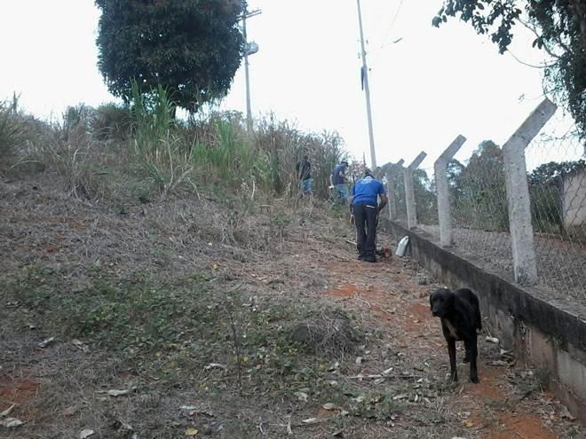 Parceria entre AABB e protetores ajuda a proteger animais em Manhuaçu, MG