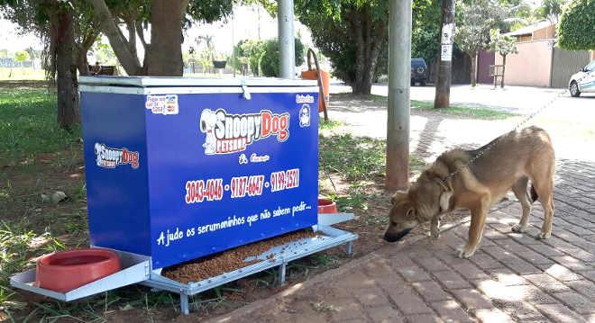 Petshop disponibiliza água e ração para animais de rua na Lagoa Itatiaia, em Campo Grande, MS