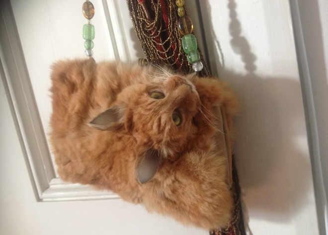 Site leiloa bolsa feita com gato empalhado e gera polêmica