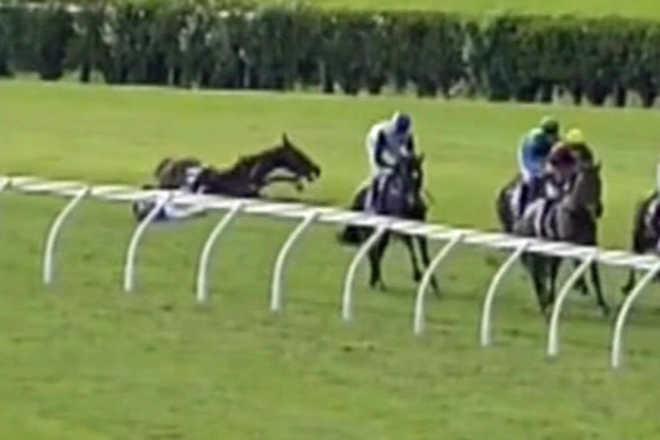 Indústria das corridas admite que as mortes dos cavalos na corrida com obstáculos são 'preocupantes'