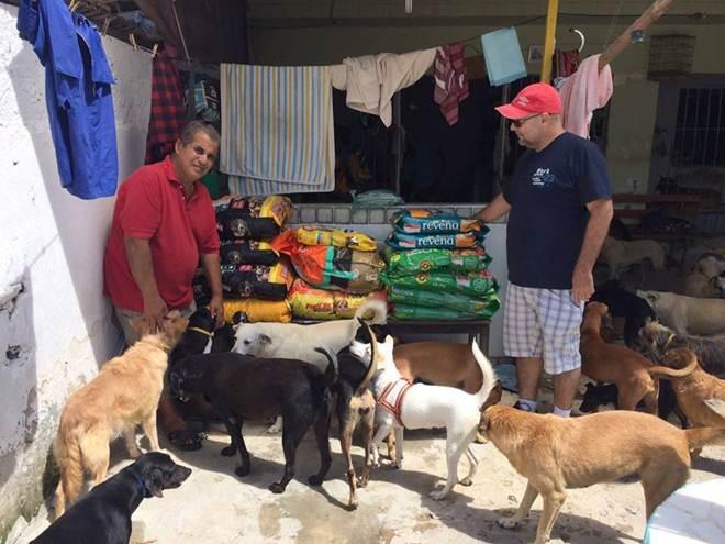 Universitários realizam campanha para ajudar abrigo de cães em Jaboatão dos Guararapes, PE