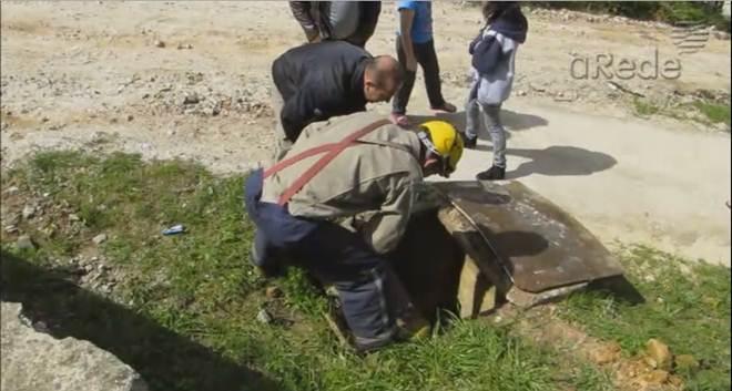 Cachorro cai em bueiro e mobiliza bombeiros para resgate