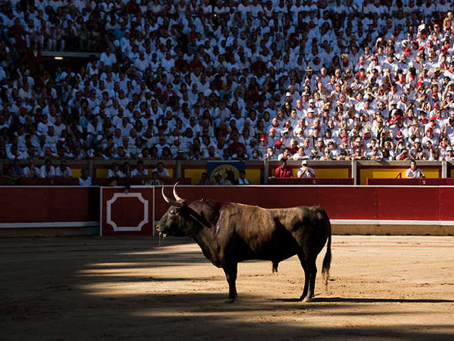 Festas de San Fermín: morte na arena