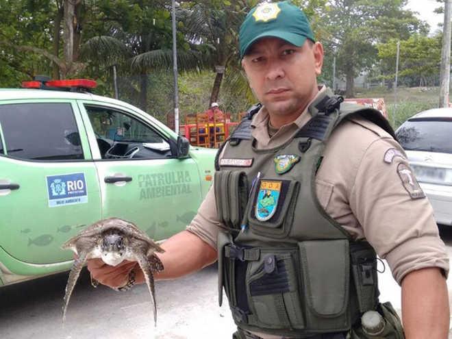 Patrulha Ambiental resgata tartaruga marinha no Recreio, RJ