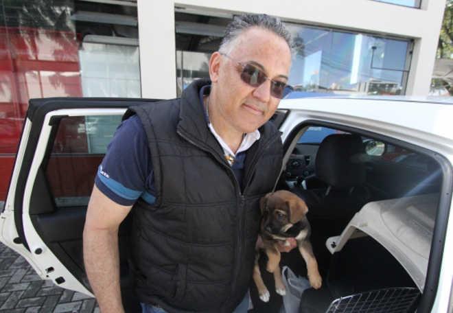 Transporte irregular de animais domésticos pode resultar em infrações graves