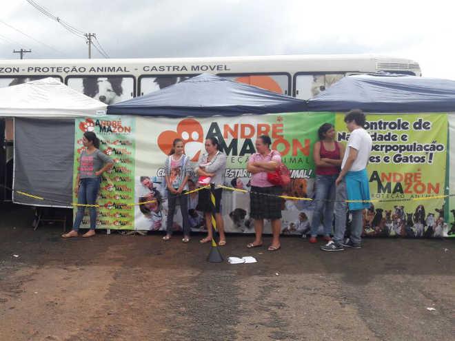 Mais de 270 animais domésticos são castrados gratuitamente em Pitangueiras e Ibitiúva, SP
