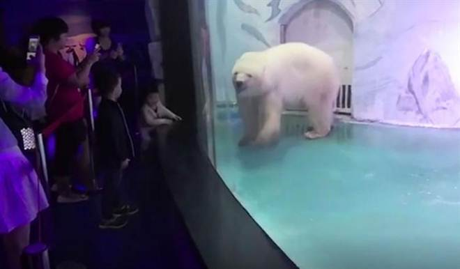 China: aumentam os casos de Centros Comerciais-Zoológicos