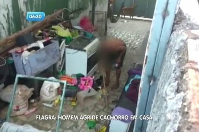 Homem agride cachorro dentro de casa em Brasília, DF