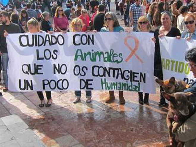 Um estudo afirma que em 77,6% dos voluntários de ONGs de proteção aos animais são mulheres