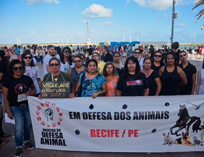 Defensores dos animais protestam no Recife (PE) contra vaquejadas