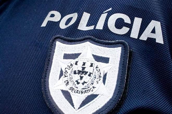 Polícia apreendeu 28 aves em lojas de animais em Portugal