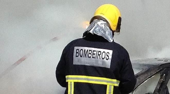 Portugal: Cães morrem carbonizados em carrinha