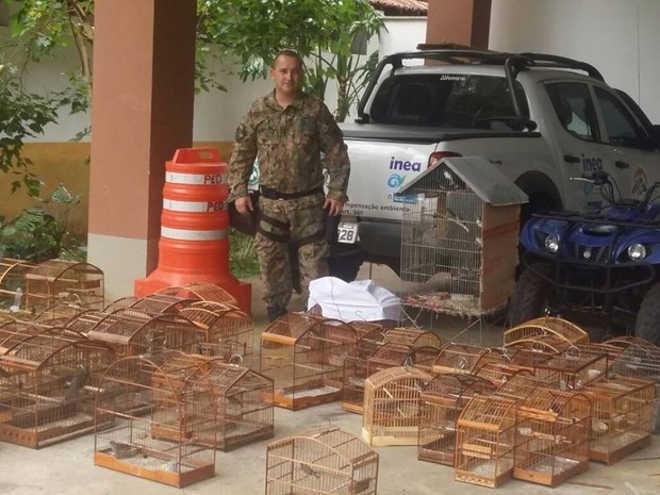 Polícia apreende 81 pássaros e gaiolas em São Sebastião do Alto, no RJ