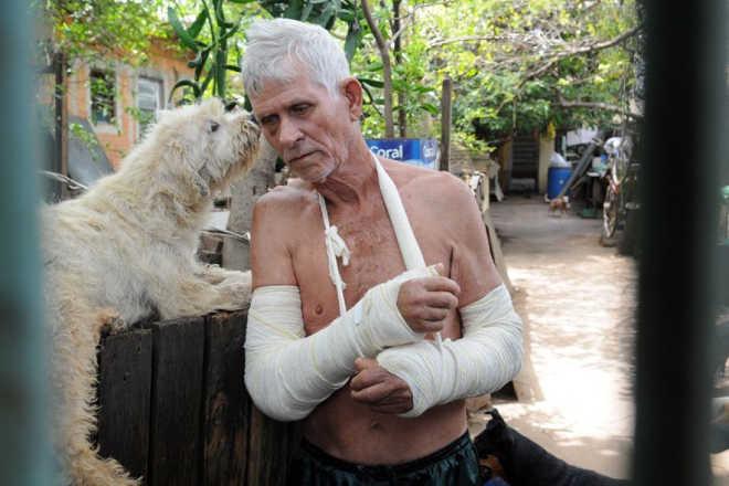 Aposentado que cuida de 70 animais busca adoções em Campinas, SP