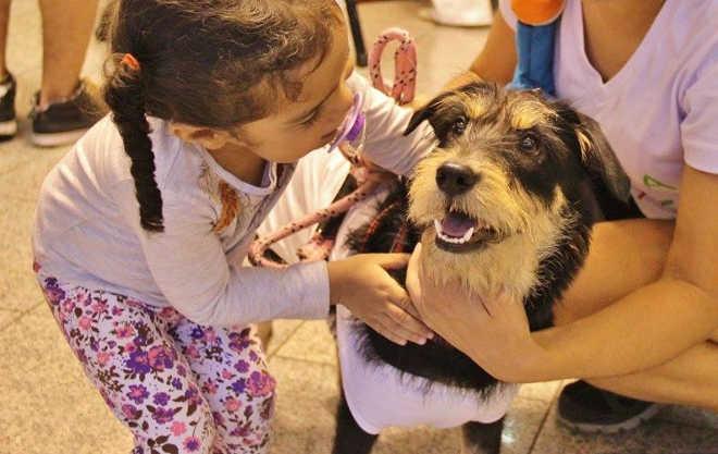 Encontro Vegano tem programação especial para as crianças em São Paulo