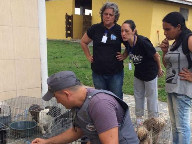 Dona de canil clandestino em Itapetininga (SP) é multada em R$ 198 mil