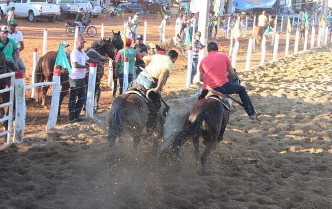'Foi uma luta de 20 anos', diz ativista sobre fim da vaquejada no Ceará