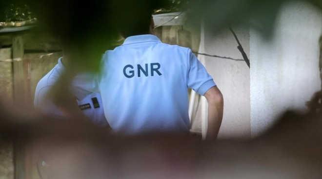 Portugal: GNR investiga mortes de animais com veneno