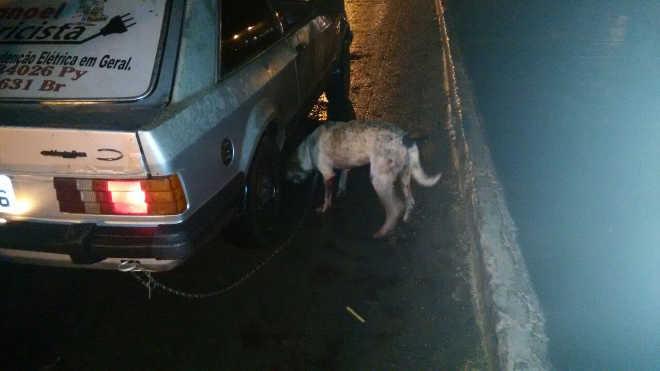 Jovem acorrenta cachorro em carro e arrasta animal pelas ruas de Coronel Sapucaia, MS