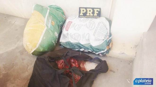 PRF flagra passageiro com animais silvestres abatidos, na BR-158